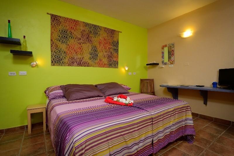 1-slaapkamer appartement B