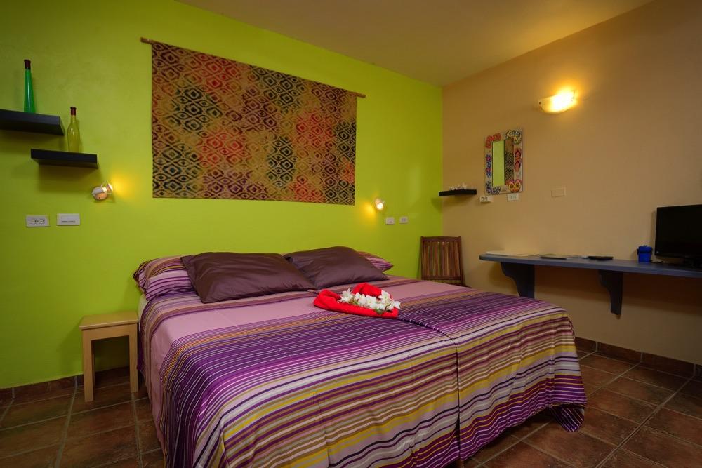 1-slaapkamer appartement C